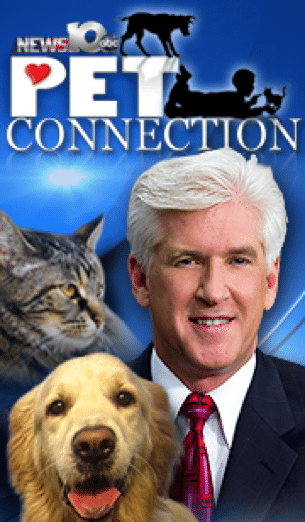 Steve Caporizzo and The Pet Connection